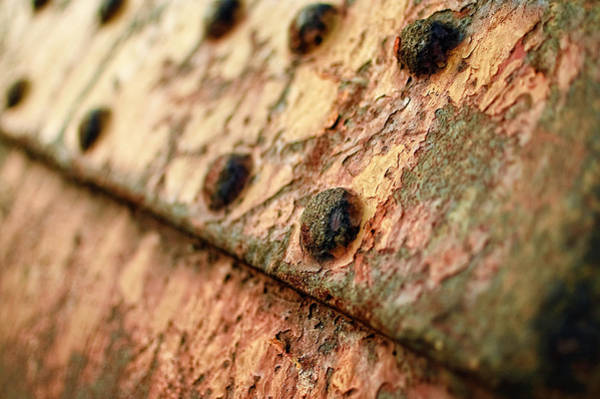 Photograph - Rusty Bolts by Steve Stanger