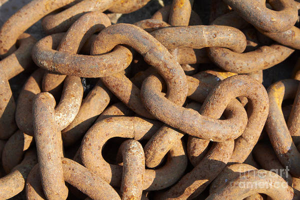 Wall Art - Photograph - Rusty Chain by Tony Cordoza