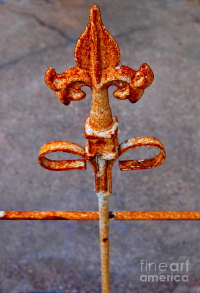 Fleur Digital Art - Rusty Fleur-de-lis Gate by Pamela Smale Williams