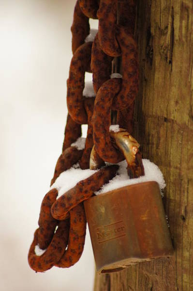 Wall Art - Photograph - Rusty Lock by Angi Parks