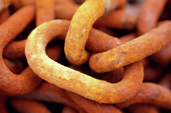 Chain Link Photograph - Rusty Metal Chain by Mauro Fermariello/science Photo Library