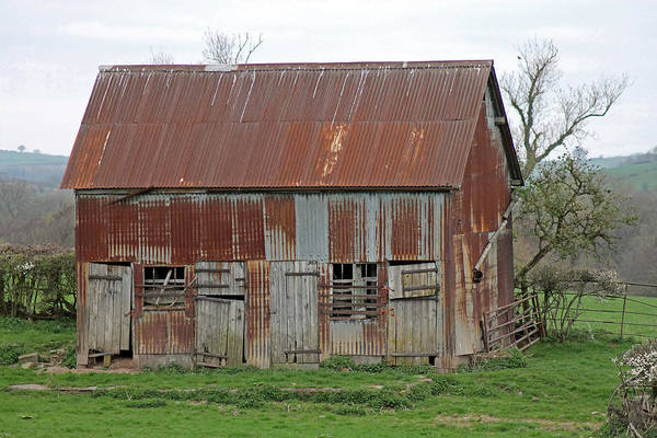 Photograph - Rusty Old Barn by Tony Murtagh