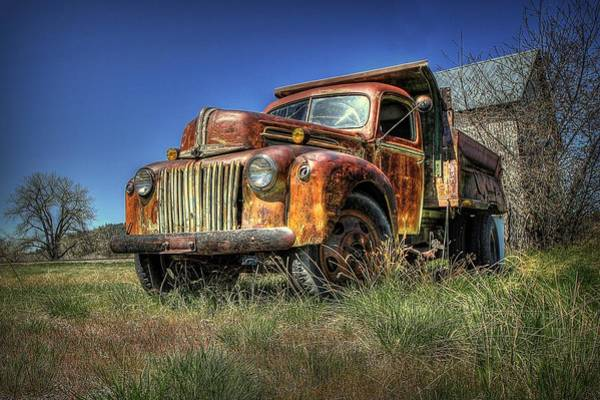 Montana Photograph - Rusty Reed by Ryan Smith