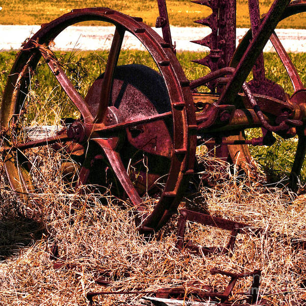 Photograph - Rusty Wheels by Lesa Fine