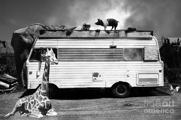 Colorful Giraffe Photograph - Rv Trailer Park 5d22705 Black And White by Wingsdomain Art and Photography