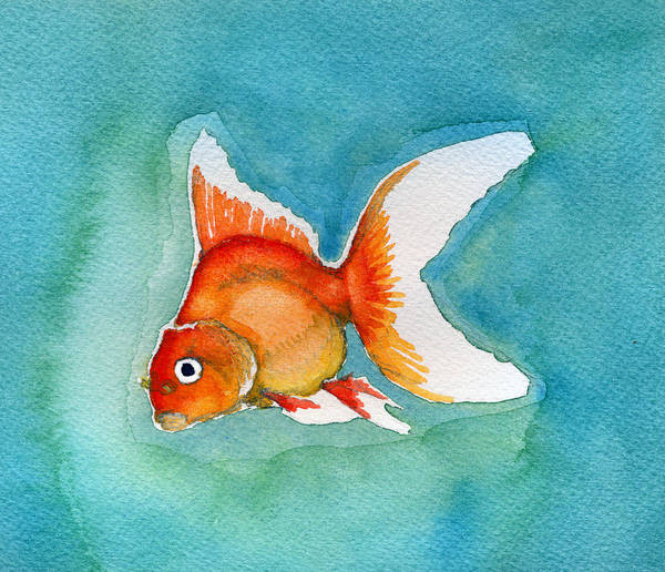 Painting - Ryukin Goldfish by Katherine Miller
