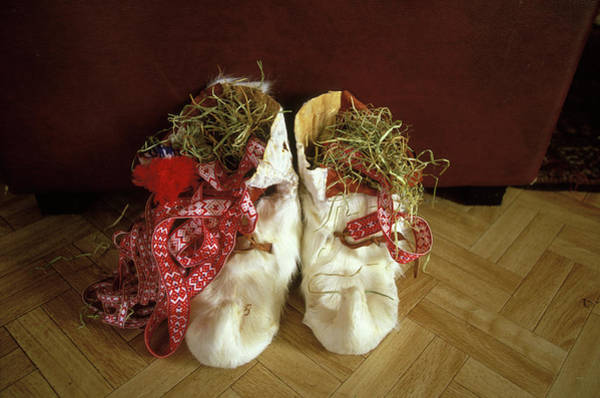 Ethnic Minority Photograph - Saami Winter Shoes Made Of Reindeer by Anders Ryman