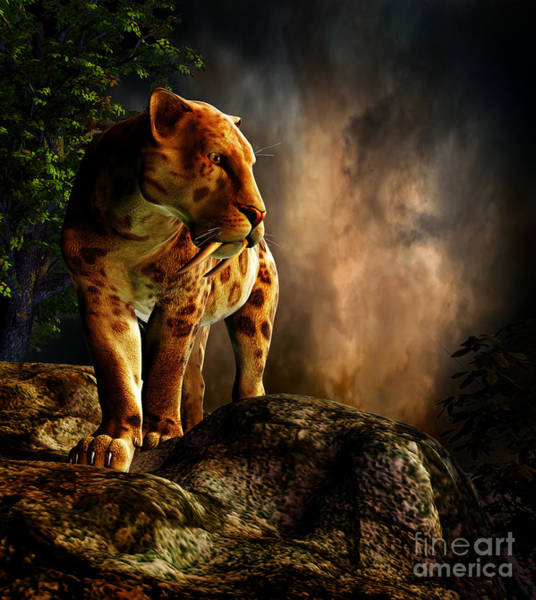 Smilodon Wall Art - Digital Art - Sabre-toothed Cat On The Prowl by Philip Brownlow
