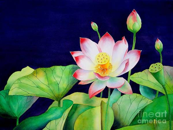 Wall Art - Painting - Sacred Lotus by Robert Hooper