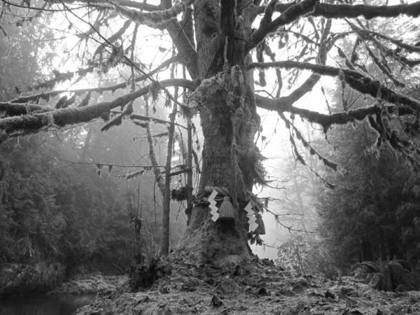 Sacred Tree No. 2 Art Print
