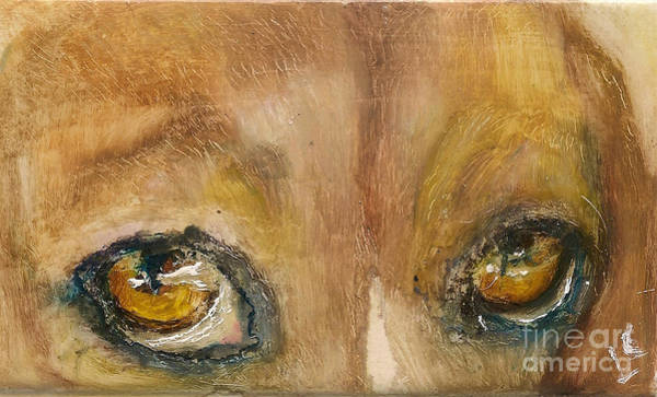 Painting - Sad Eyes by Donna Chaasadah