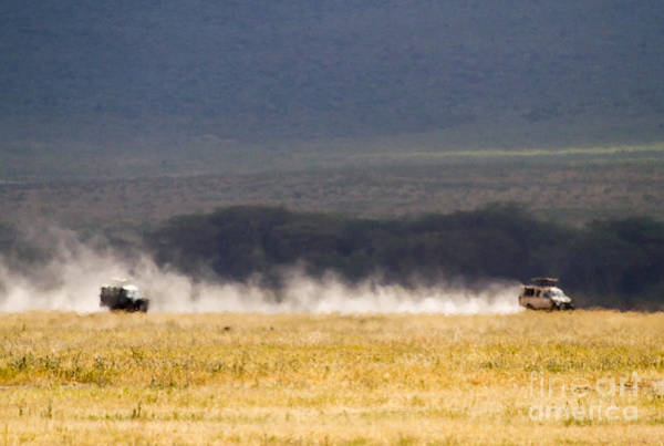 Photograph - Safari Dust by Chris Scroggins