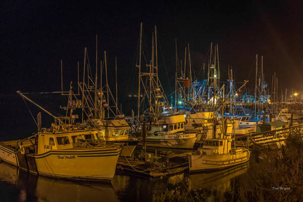 Photograph - Safe Harbor ......  Morro Bay by Tim Bryan
