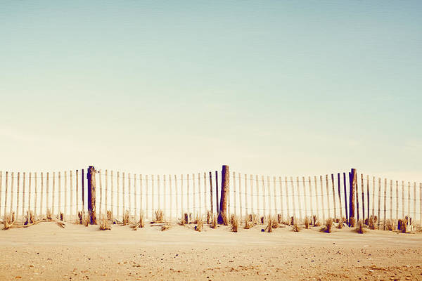 Wall Art - Photograph - Safeguard by Carolyn Cochrane