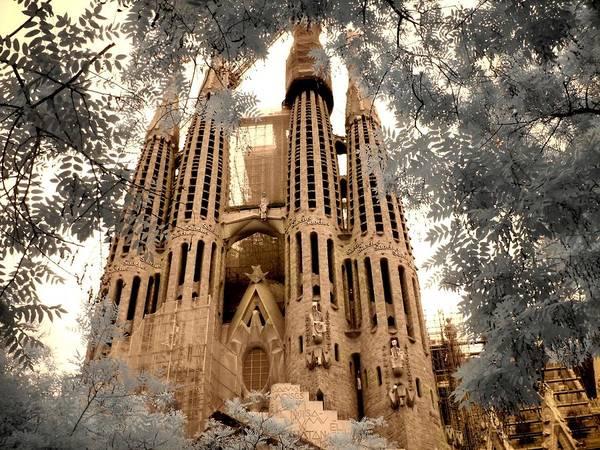 Linder Wall Art - Photograph - Sagrada Familia by Jane Linders