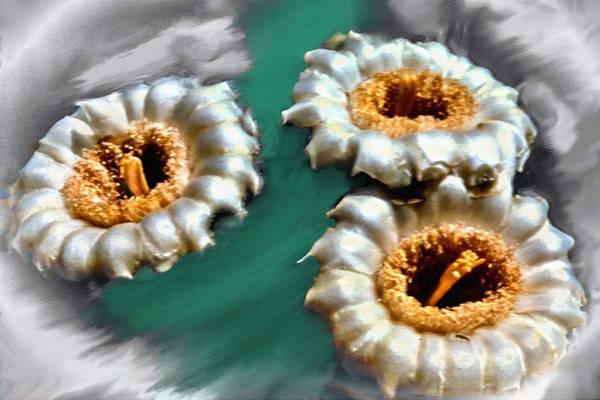 Painting - Saguaro Cactus Blossoms by Bob and Nadine Johnston