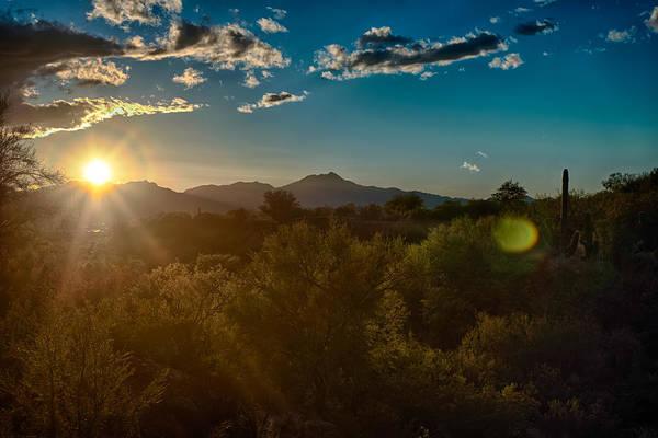 Photograph - Saguaro National Park by Dan McManus