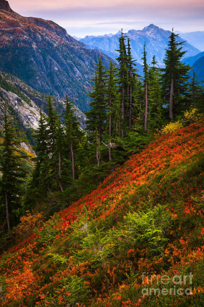Cascade Mountains Wall Art - Photograph - Sahale Arm by Inge Johnsson