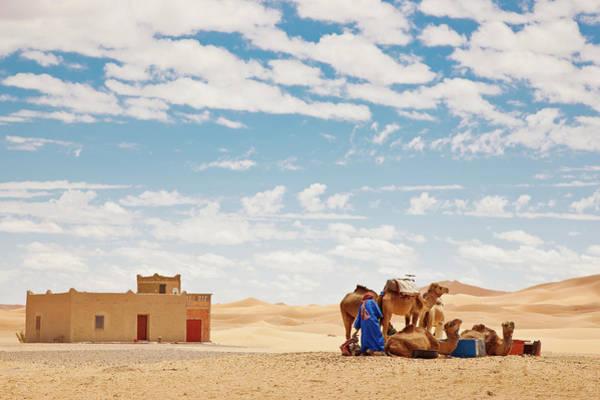 Berber Wall Art - Photograph - Sahara Berber With Camels Erg Chebbi by Mlenny