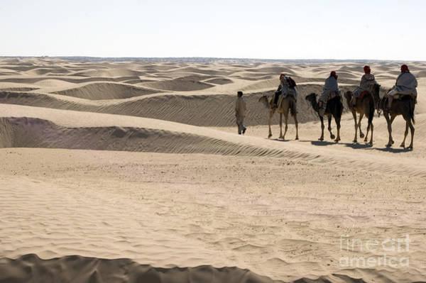 Photograph - Sahara by Randi Grace Nilsberg