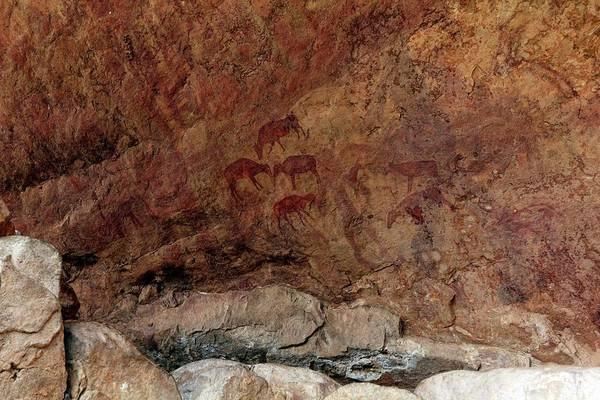 Wall Art - Photograph - Saharan Rock Painting by Martin Rietze
