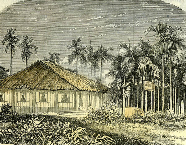 Vietnam Drawing - Saigon Rue De Gouvernement Vietnam 19th Century by English School