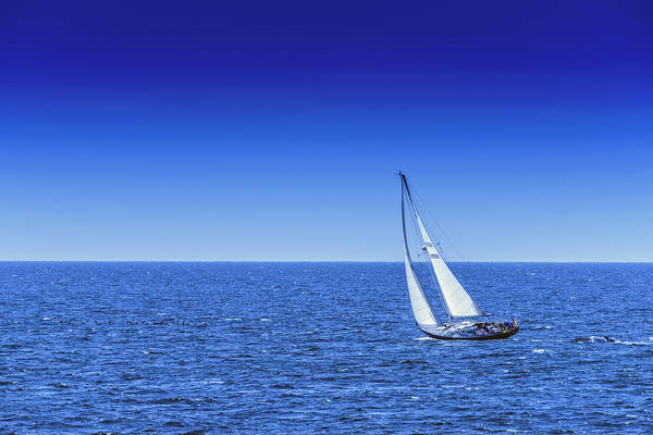Photograph - Sail Away by Rick Berk