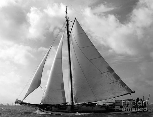 Photograph - Sail By by Luc Van de Steeg