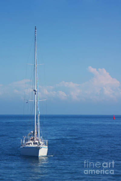 Photograph - Sailboat by Angela Doelling AD DESIGN Photo and PhotoArt
