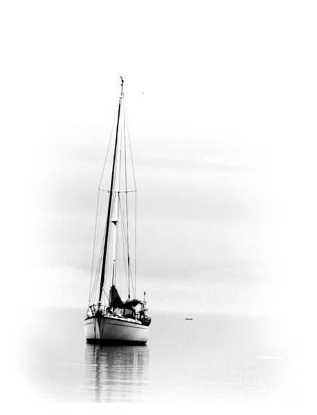 Sailboat Bw Too Art Print