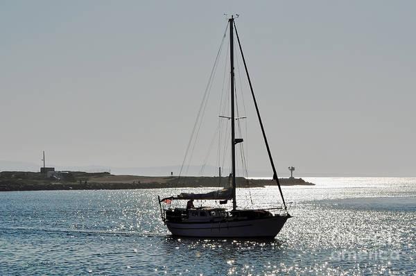 Photograph - Sailboat Heading Home by Susan Wiedmann