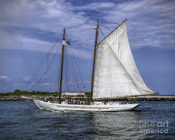 Photograph - Sailboat In Cape May Channel by Nick Zelinsky