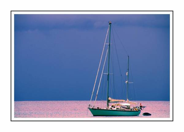 Photograph - Sailboat In Pink by Alice Gipson