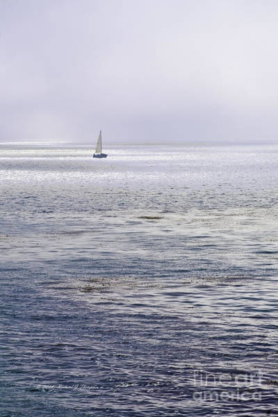 Photograph - Sailboat In The Distance by Richard J Thompson