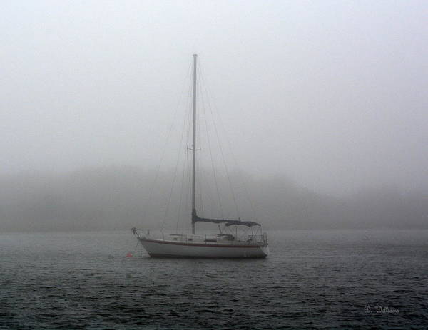 Photograph - Sailboat In The Fog by Dan Williams