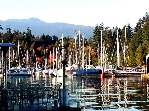 Photograph - Sailboat Marina by Nikki Dalton