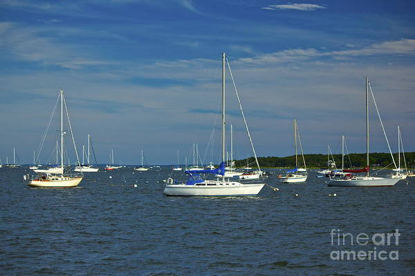 Photograph - Sailboats by Amazing Jules