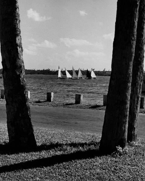Sports Photograph - Sailboats At Jupiter Island by Serge Balkin