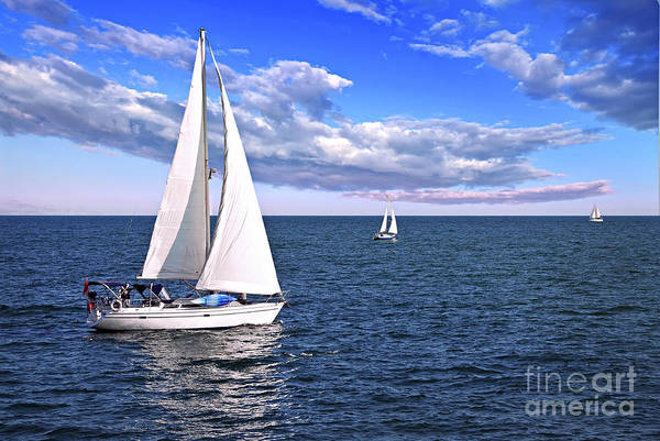 Sail Boat Photograph - Sailboats At Sea by Elena Elisseeva