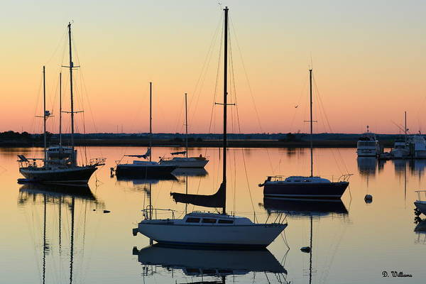 Photograph - Sailboats At Sunset by Dan Williams
