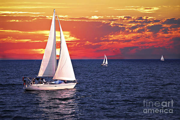 Sail Boat Photograph - Sailboats At Sunset by Elena Elisseeva