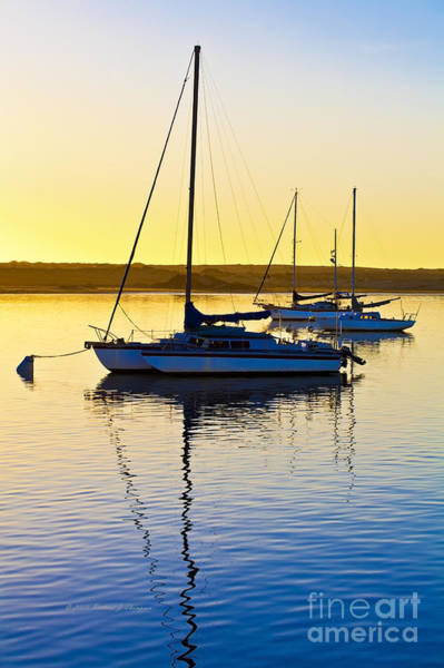 Photograph - Sailboats At Sunset by Richard J Thompson