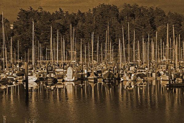 Photograph - Sailboats I by Jani Freimann