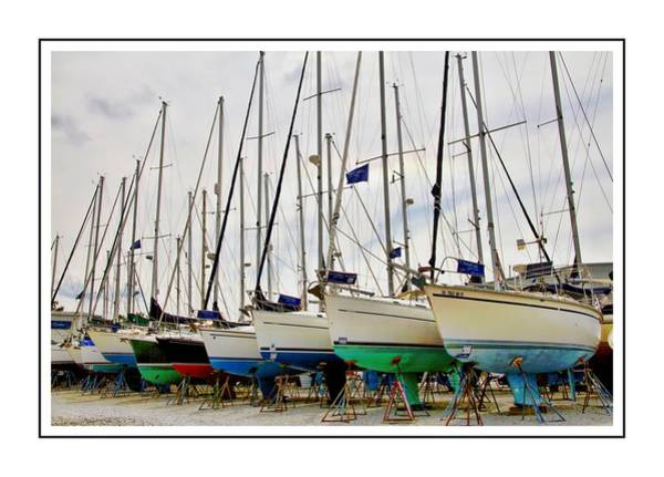 Photograph - Sailboats In A Row by Alice Gipson