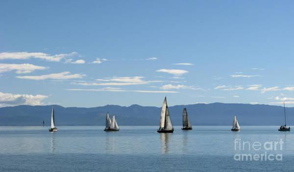 Sailboats In Blue Art Print