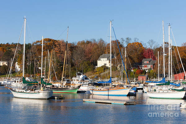 Photograph - Sailboats In Camden Harbor I by Clarence Holmes