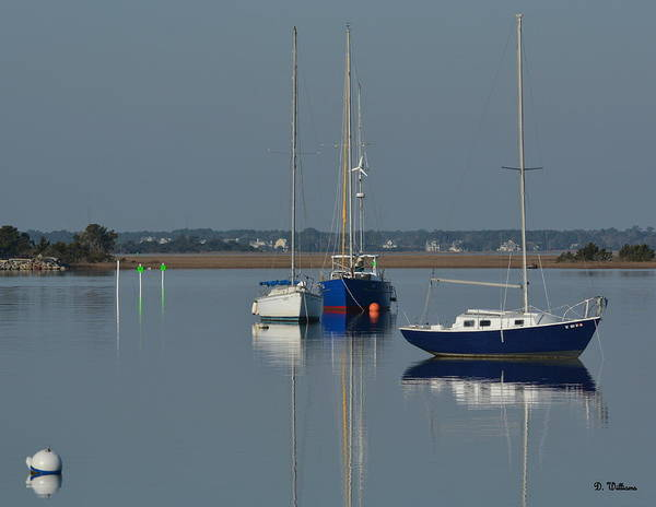 Photograph - Sailboats In The Marina by Dan Williams