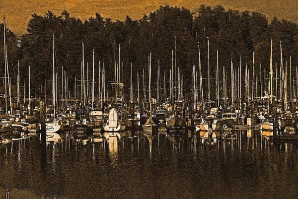 Photograph - Sailboats by Jani Freimann