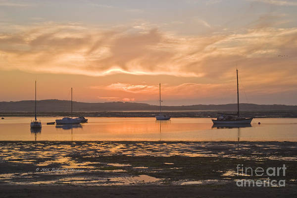 Photograph - Sailboats Mooring At Sunset by Richard J Thompson