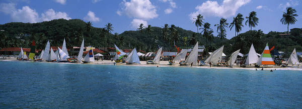 Sea Of Serenity Photograph - Sailboats On The Beach, Grenada Sailing by Panoramic Images